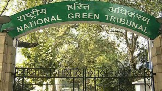 NGT slaps Rs 100 crore damages on shipping firm for oil spill